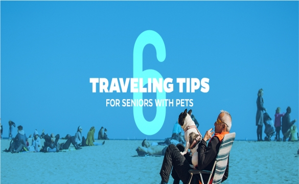6 Travelling Tips for Seniors with Pets